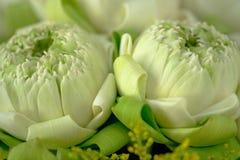 Adorez le lotus du style thaïlandais traditionnel image stock