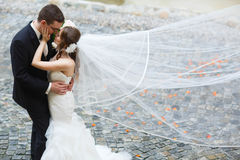 Adoring happy cute groom and bride are hugging on the backgroun Stock Photo