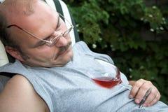 Adormecido caído Imagem de Stock Royalty Free
