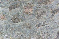 Adornado con el muro de cemento horizontal Fondo, textura, base Fotografía de archivo