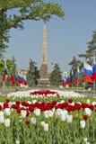 Adornado con las banderas y las porciones de tulipanes el callejón Imagenes de archivo