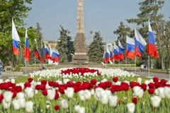 Adornado con las banderas y las porciones de tulipanes el callejón Foto de archivo libre de regalías