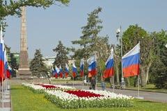 Adornado con las banderas y las porciones de tulipanes el callejón Fotografía de archivo