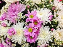 Adornado con las flores frescas Imagenes de archivo