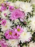 Adornado con las flores frescas Imagen de archivo libre de regalías