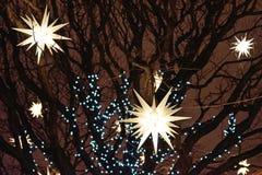 Adornado con las linternas y las guirnaldas en los árboles Fotos de archivo