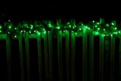 Adornado con las luces verdes de la Navidad en la cerca Fotografía de archivo libre de regalías