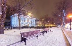 Adornado para parque de la ciudad del ` s de la Navidad y del Año Nuevo en la noche con los bancos Fotos de archivo
