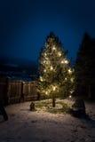 Adornado por el árbol de navidad de las luces en la noche Fotos de archivo