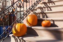 Adornamiento de Hoboken Halloween Imagenes de archivo