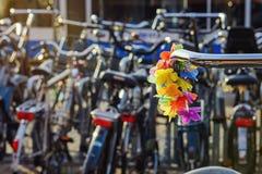 Adornamiento de la bicicleta Fotografía de archivo libre de regalías