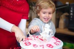 Adornamiento de la torta para la celebración de los Años Nuevos Imágenes de archivo libres de regalías