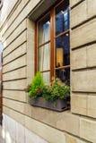 Adornamiento de la ventana con las diversas plantas decorativas, Ginebra, interruptor Foto de archivo libre de regalías