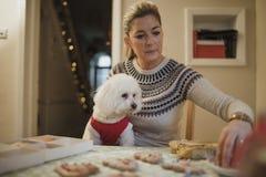 Adornamiento de las galletas de la Navidad con el perro Foto de archivo libre de regalías