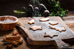 Adornamiento de las galletas del pan de jengibre para la Navidad Fotografía de archivo libre de regalías