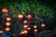 Adornamiento de las lámparas chinas colgantes de la linterna en el árbol Foto de archivo libre de regalías