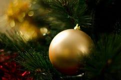 Adornamiento de los árboles de navidad Fotografía de archivo libre de regalías