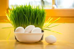 Adornamiento de los huevos de Pascua Imagen de archivo libre de regalías