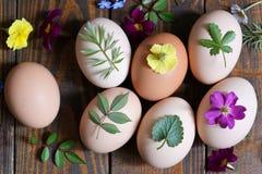 Adornamiento de los huevos de Pascua con las hojas Imagen de archivo libre de regalías