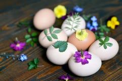 Adornamiento de los huevos de Pascua con las hojas y las flores Imagen de archivo libre de regalías