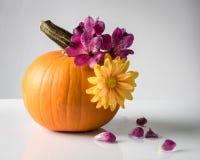 Adornamiento de una calabaza con las flores frescas Foto de archivo libre de regalías