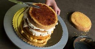 Adornamiento de una torta deliciosa con helado Imagenes de archivo