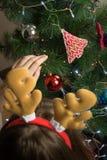 Adornamiento del árbol de la piel con las linternas, las guirnaldas y los juguetes brillantes Imágenes de archivo libres de regalías
