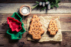 Adornamiento del árbol del pan de jengibre para la Navidad Imagen de archivo libre de regalías