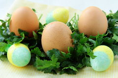 Adornamiento del huevo de Pascua Fotos de archivo libres de regalías