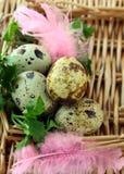 Adornamiento del huevo de Pascua colorido Foto de archivo libre de regalías
