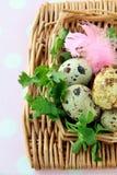 Adornamiento del huevo de Pascua colorido Imágenes de archivo libres de regalías