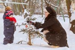 Adornamiento del pino de la Navidad Fotos de archivo libres de regalías
