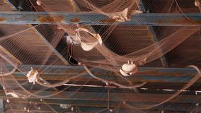 Adornamiento del techo con las conchas de berberecho en un caf? fotos de archivo libres de regalías