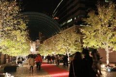 Adornamiento ligero de la iluminación en el árbol en el invierno en Ebisu, Tokio, Japón Fotografía de archivo libre de regalías