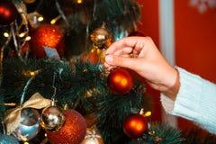 Adornan a la muchacha en el suéter blanco con un árbol de navidad Imagenes de archivo