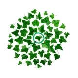 Adorne alrededor de modelo de la planta verde de la hiedra de la hoja con la pulsera de las gotas del mala aislada en el fondo bl Fotos de archivo