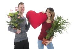 Adorne a casa con las plantas Fotografía de archivo libre de regalías