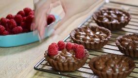 Adorne con las tartas del chocolate de las frambuesas almacen de video