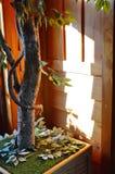 Adorne el árbol en casa de madera Imagen de archivo