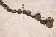 Adorne el objeto en la playa Foto de archivo
