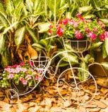 Adorne la bicicleta. Imagen de archivo libre de regalías