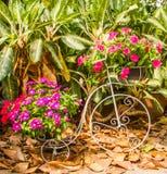 Adorne la bicicleta. Foto de archivo libre de regalías
