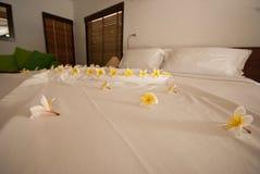 Adorne la flor en la cama Foto de archivo libre de regalías