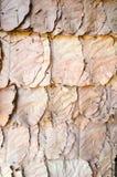 Adorne las paredes con el fondo seco de las hojas Fotos de archivo