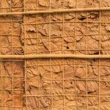 Adorne las paredes con las hojas y el fondo secos Imagenes de archivo