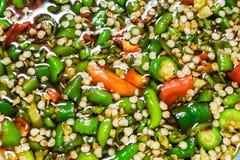 Adorne los chiles cortados en la salsa de la sal Imagen de archivo