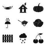 Adorne los iconos fijados, estilo simple ilustración del vector