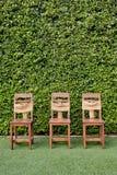 Adorne tres sillas de madera contra la pequeña pared verde del árbol Imagenes de archivo