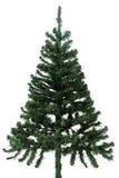 Adorne un árbol de pino Foto de archivo libre de regalías
