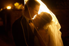 Adorning gentle elegant fashion groom and bride is hugging  on t Royalty Free Stock Image